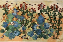 4-Flowering-Courgette-2020-123-1.26-x-0.84-m-Reda-Ahmed